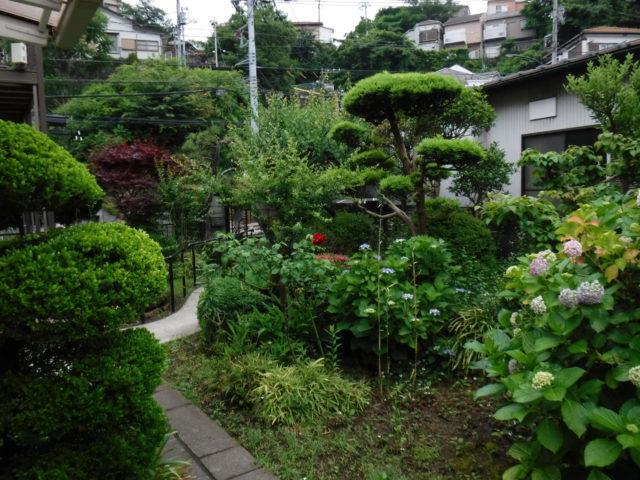 お庭の手入れ その2 施工前の様子