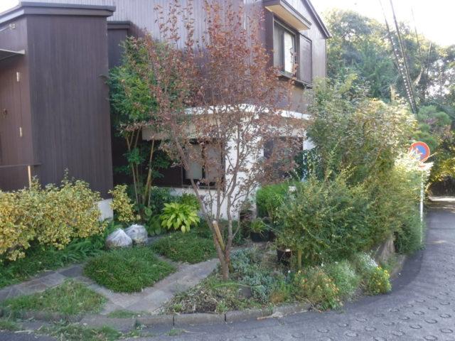 お庭の手入れ その5 施工前の様子