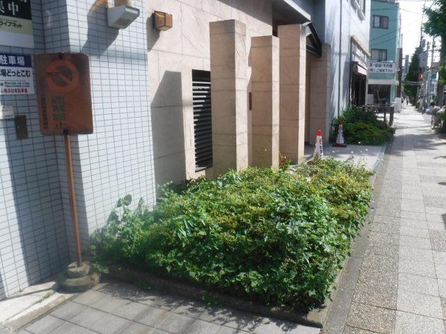 エントランスの植栽イメージチェンジ 施工前の様子